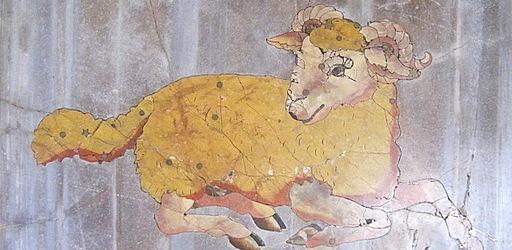 Carneiro (c) Jean-Pol Grandmont @ Commons Wikimedia